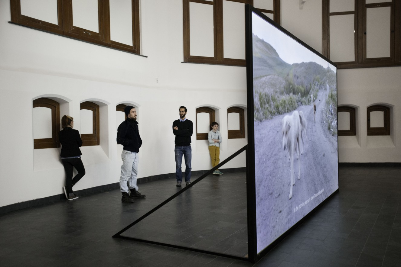 Exhibition view of Kelly SchachtÔÇÖs performance intervention & Annika ErikssonÔÇÖs film I am the dog that was always here (loop) in 2013, ┬® Laurent Fobe